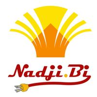 Nadji.Bi Gambia Ltd.