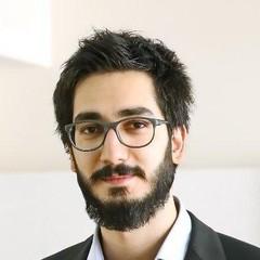 S. HosseinNabavi