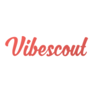 Vibescout