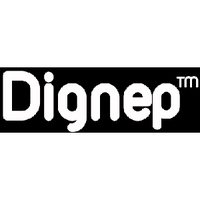 Dignep group pvt ltd