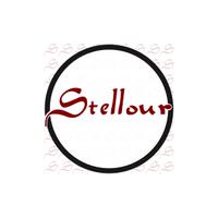 Stellour Group Corporration Limited 思图信息科技(上海)有限公司