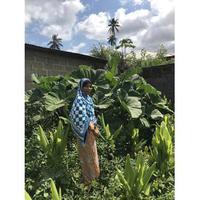 SAMEM AGRISPICES FARMING