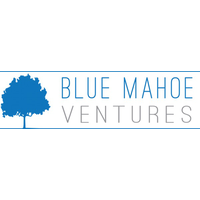 Blue Mahoe Ventures