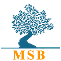 Mediterranean School of Business