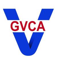 Georgian Venture Capital Association
