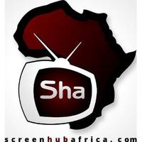 Screenhubafrica