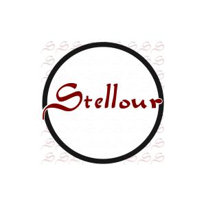 Stellour Group Corporration Limited 思图信息科技(上海)有限公司 logo