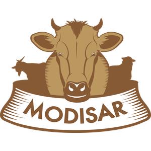 Pikavia logo