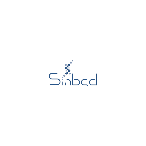 Sinbad Technologies Limited logo