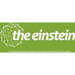 the Einstein  logo