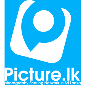Picture.lk logo