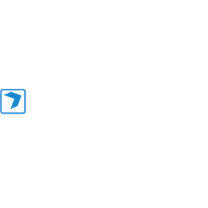 DroneWings logo