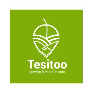 Tesitoo Entrepreneurship  logo