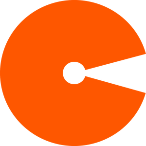 CYBAUG (PTY) LTD. logo