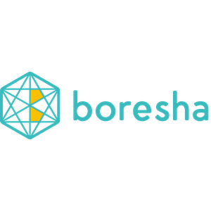Boresha Technologies logo