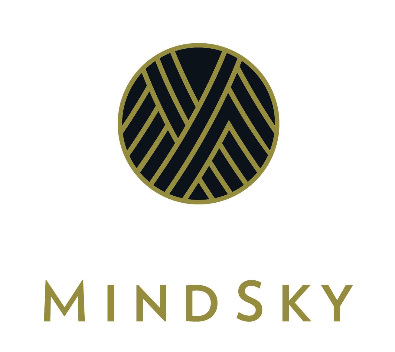 MindSky logo